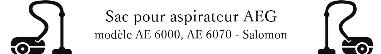 Sac aspirateur AEG AE 6000, AE 6070 - Salomon en vente