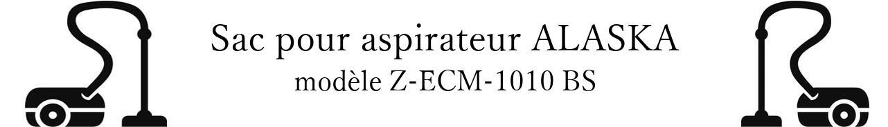 Sac aspirateur ALASKA Z-ECM-1010 BS en vente