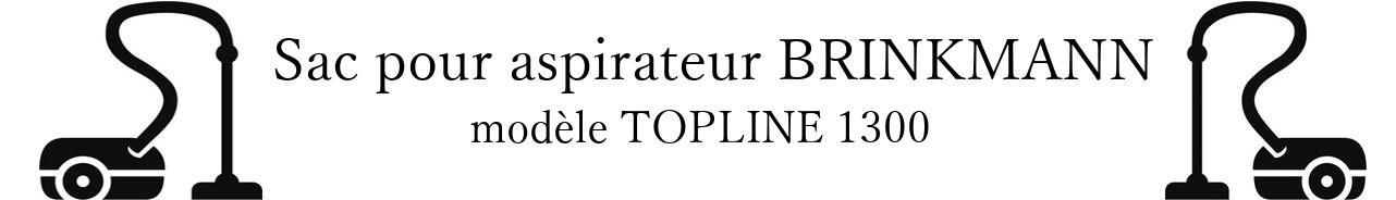 Sac aspirateur BRINKMANN TOPLINE 1300 en vente